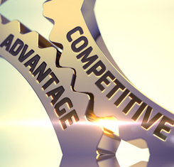 The Contribution of Supplier Diversity to Competitive Advantage